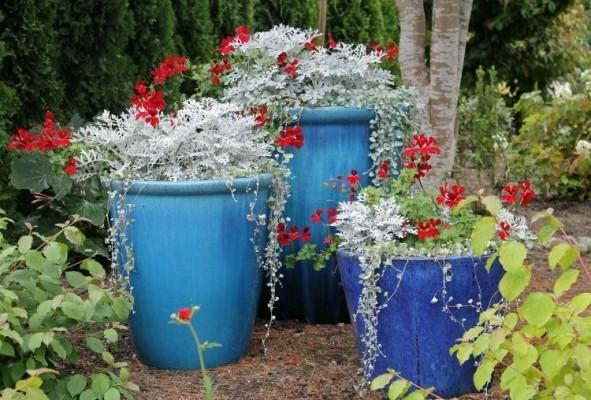 575712 bloempottencoverjpg filter op bloempotten
